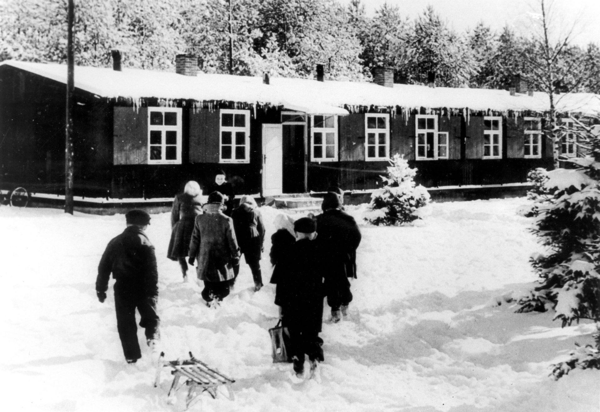 augustdorfas-skola-ziema